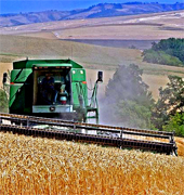 Industrial farm machines to the agriculture worldwide global industry, wholesale machinery industry... Italian machinery manufacturing for your INDUSTRY, machines engineering design, production, installation, maintenance and professional machinery technical support to your industrial distribution business...