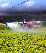 USA agriculture food manufacturing suppliers, US agriculture wholesale american vendors and beverage manufacturing companies to the USA agriculture distribution vendors and mall market industry.. Share your industrial agriculture products manufacturing with the worldwide distribution market... Italian agriculture manufacturing suppliers industry to the wholesale industrial agriculture distribution in China, United States, Italy, Germany, England, Ireland, Japan, Taiwan, Saudi Arabia, UAE, Brazil, Argentina, Peru, Venezuela, Mexico, Uruguay, Bolivia... Italian Business Guide your agriculture manufacturing suppliers source...